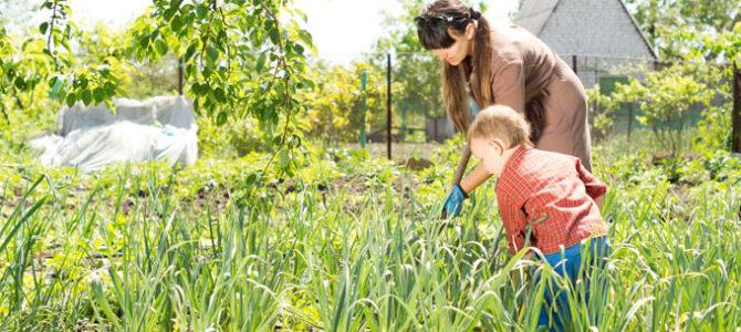 child parent gardening