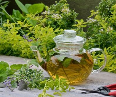 Growing and Using Herbs